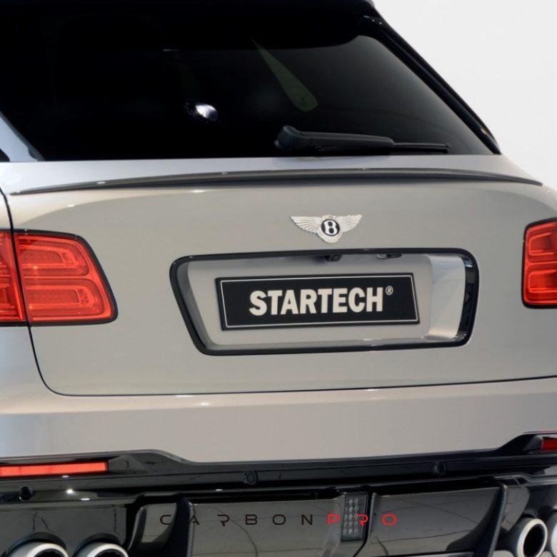 STARTECH carbon rear spoiler lip – Carbon.pro