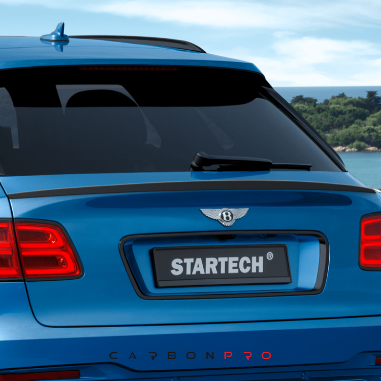 STARTECH rear spoiler lip – Carbon.pro